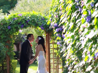 Posed wedding photography: flowers in bloom behind newlyweds kiss.