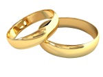 Wedding rings for gay and lesbian couples.
